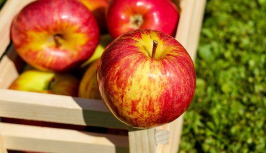 りんごのお酒シードルってどんなお酒?サンクゼールのシードルを飲んでみました。